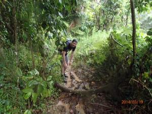 El Yunke Rio Grande 2